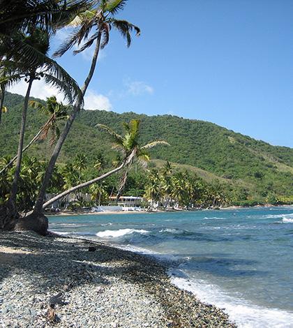 Caribe Porto Rico