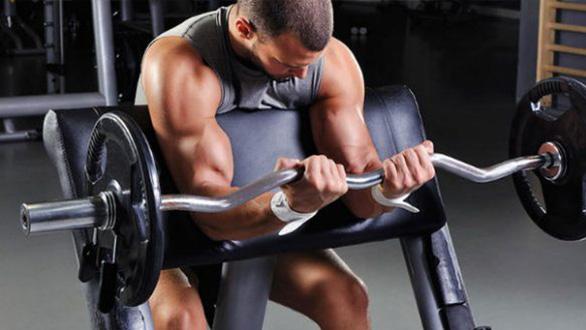 Exercícios com pesos livres  ou equipamentos: qual a melhor escolha?
