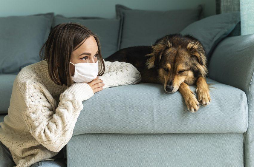 Quanto o medo e incerteza nos afetam nesta pandemia?